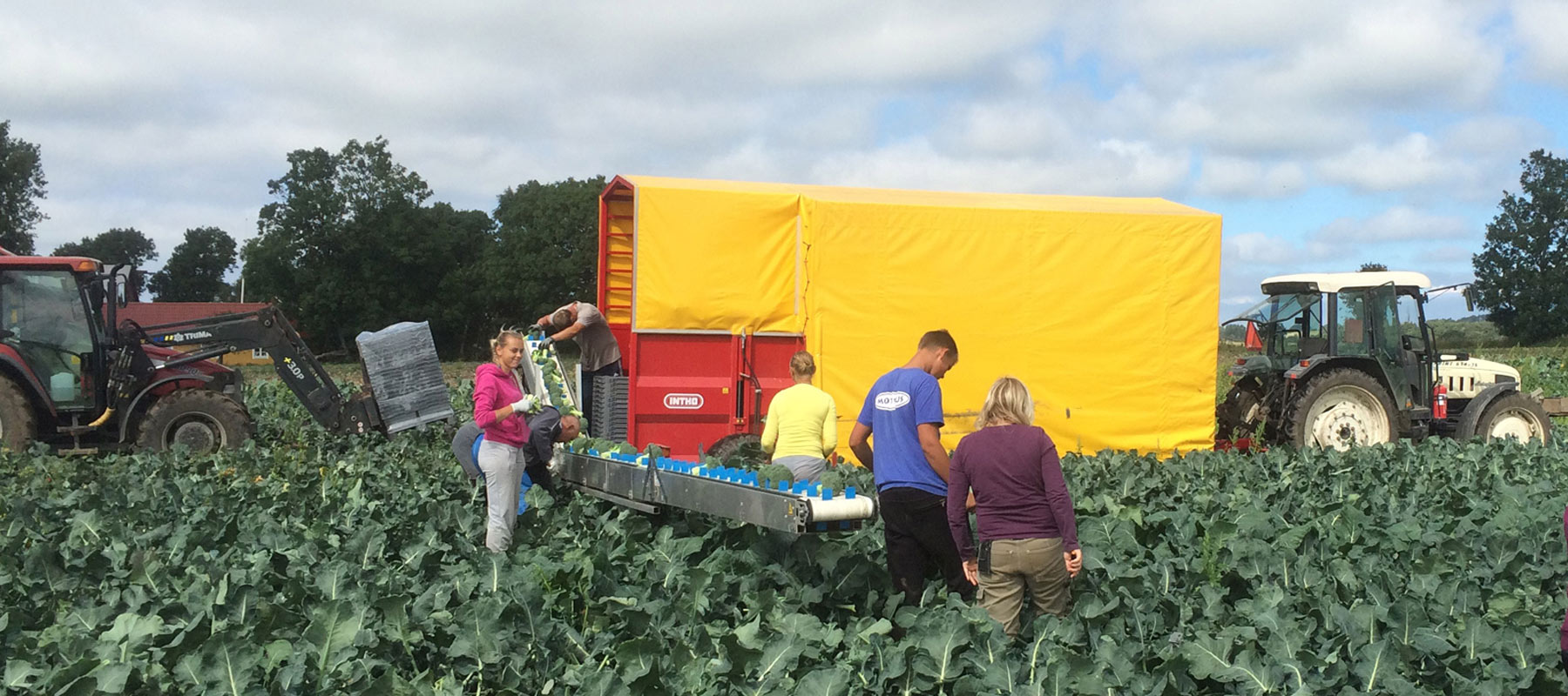 Den 21 september besökte vi Stefan Olssons lantbruk i Båstad